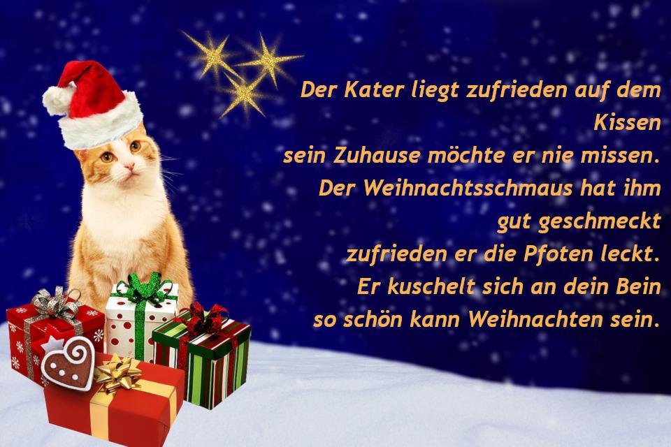 Weihnachtsgrüße für Hund und Haustier