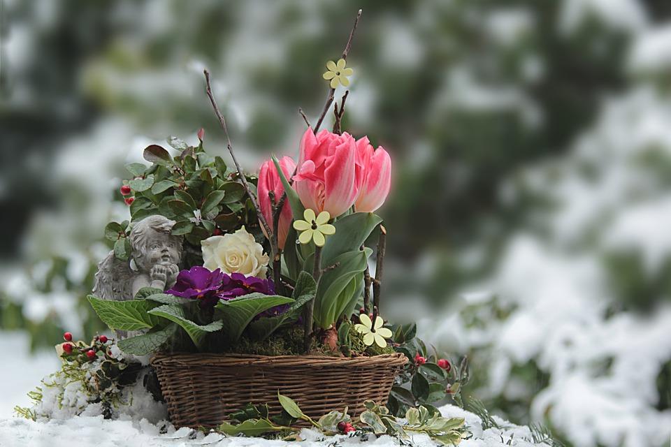 Geschenke für Gartenfreunde und Weihnachtsgeschenke für Gartenliebhaber