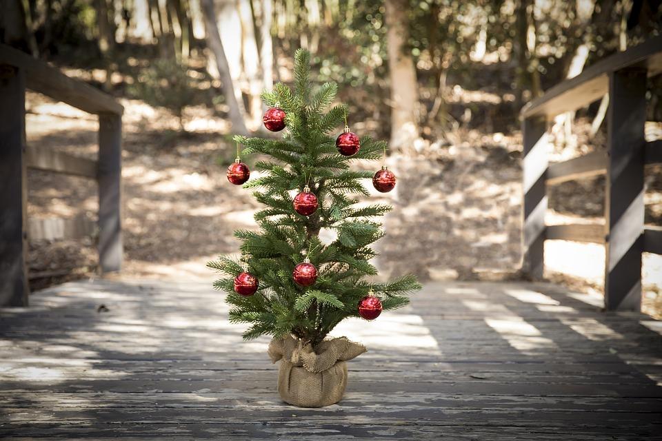 Empfehlungen für Mini Plastik Weihnachtsbäume