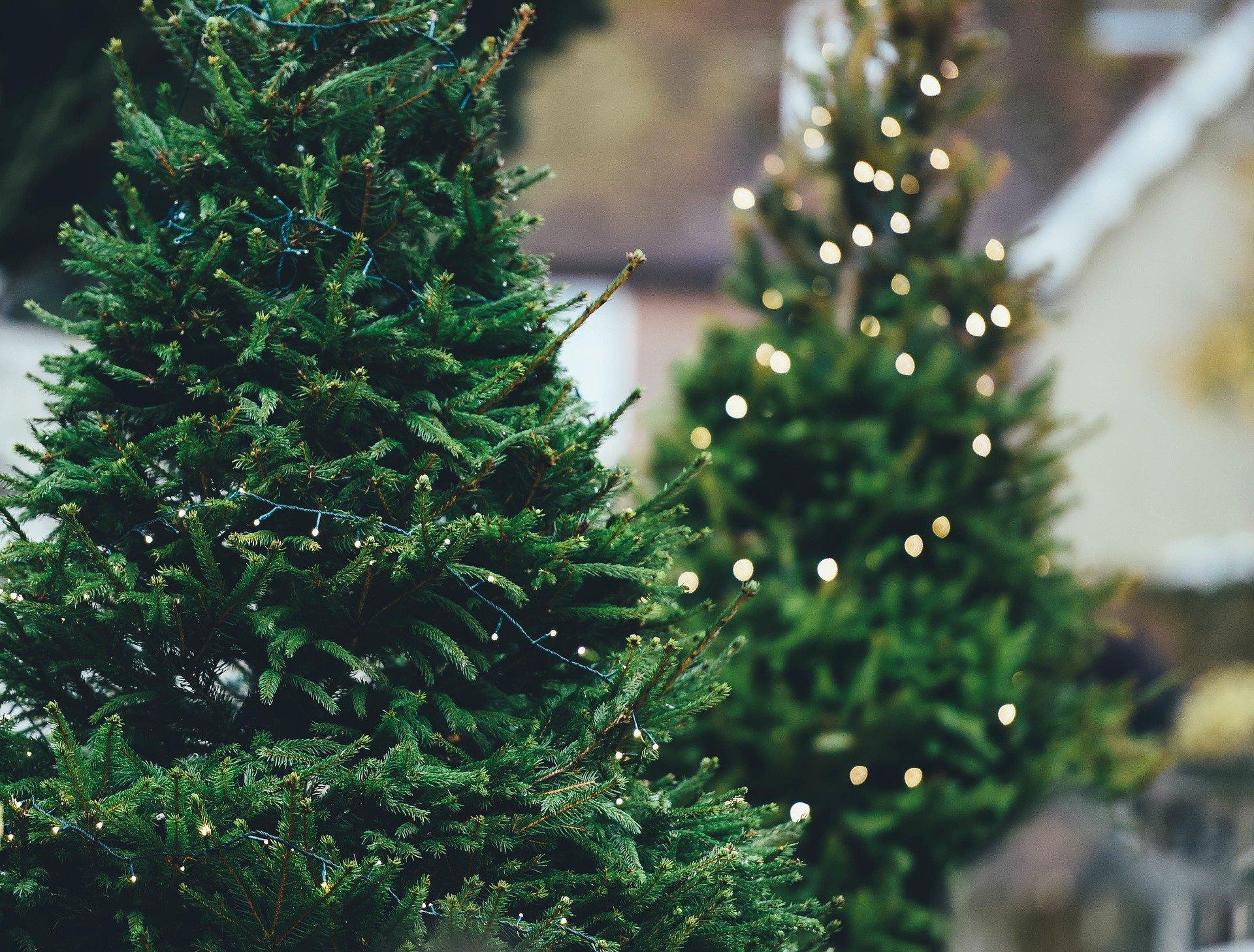 künstliche Weihnachtsbäume mit Beleuchtung