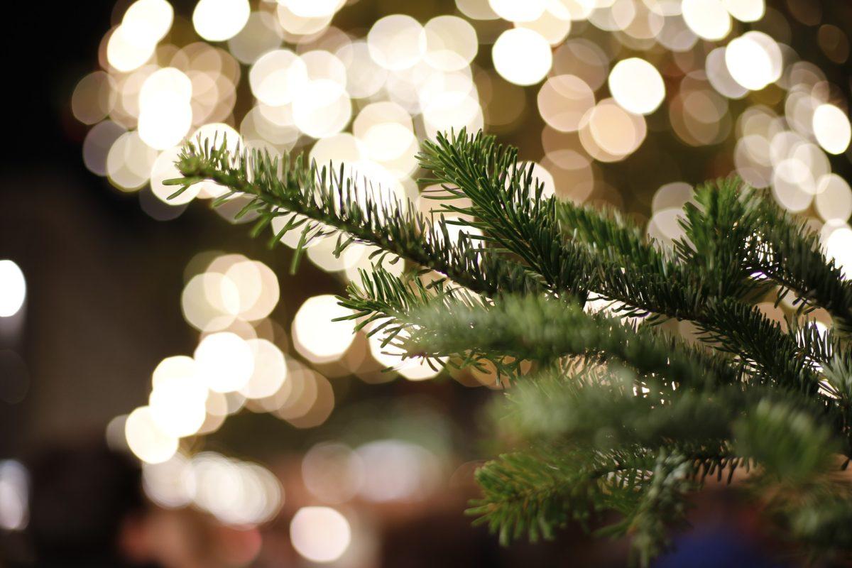 Lustige Weihnachtssprüche für Kollegen
